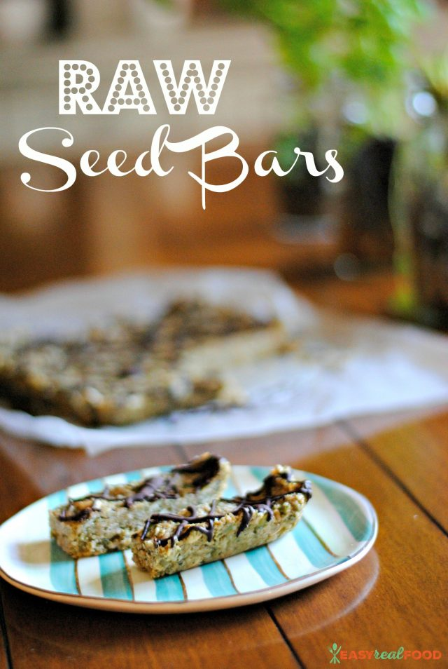 Raw Seed Energy Bars