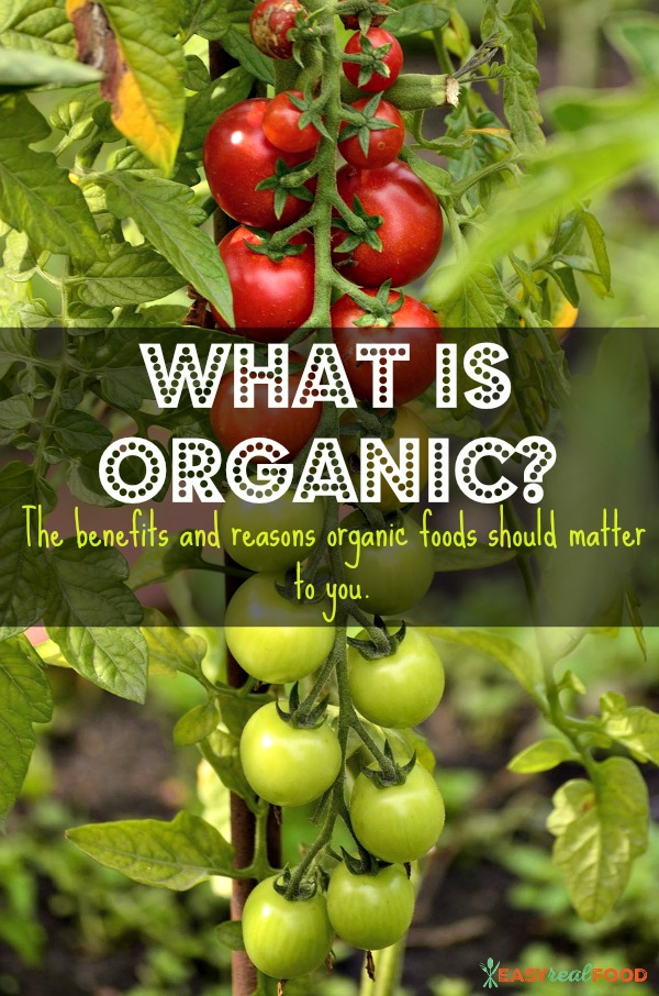Is organic worth it?