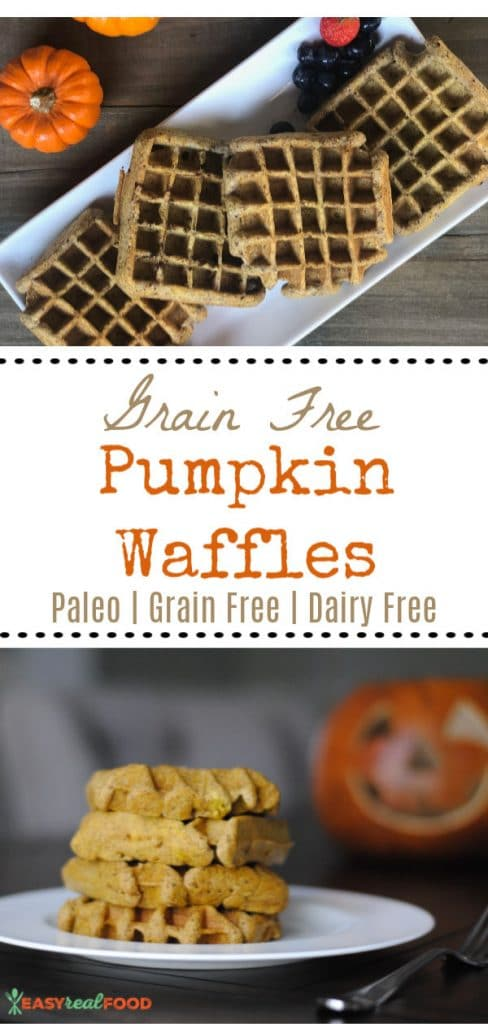 Paleo fluffy grain free pumpkin waffles. Quick, easy and made with all real food.