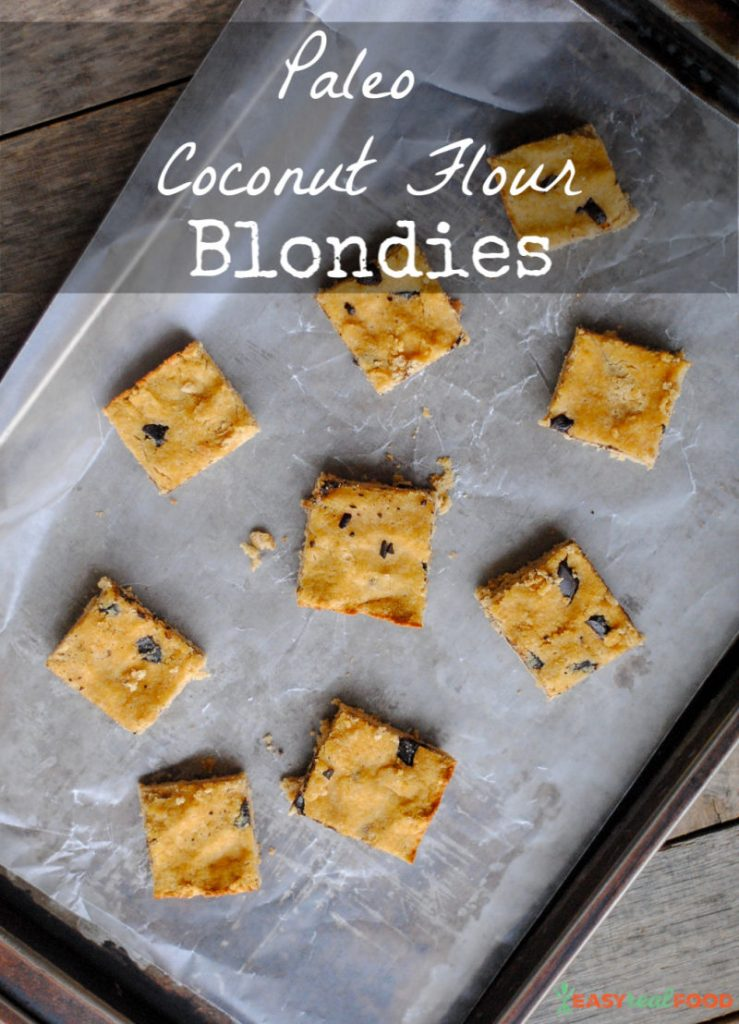 Paleo coconut flour blondies. A paleo dessert recipe.