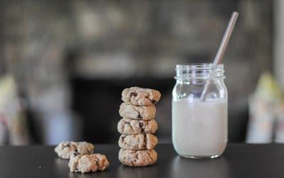 Salted Chocolate Chip Tahini Cookies (Vegan, Nut-free, Grain-free)