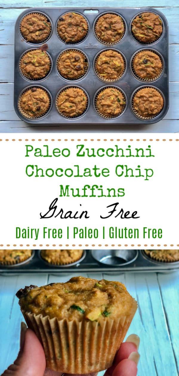 Healthy Paleo Zucchini Chocolate Chip Muffins - Grain Free, Dairy Free and Paleo