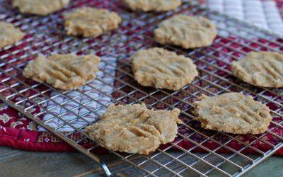 3 Ingredient Cookies (Paleo + Egg Free)
