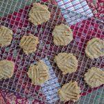 3 ingredient paleo cookies