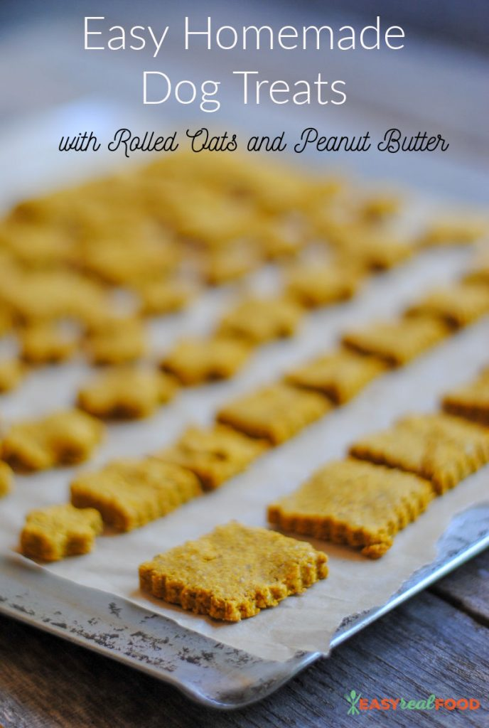Easy Homemade Dog Treats with Rolled Oats and Peanut Butter