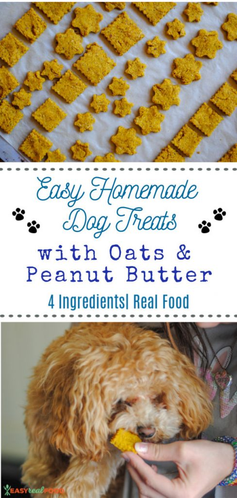 Homemade Dog Treats with Rolled Oats and Peanut Butter