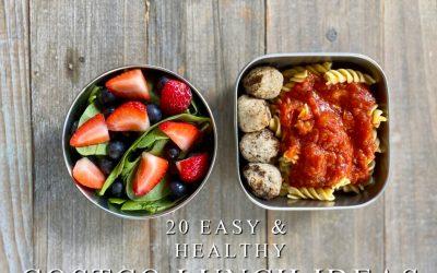 20 Easy Healthy Costco Lunch Ideas