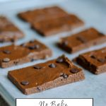 No bake 5 ingredient gluten free dairy free protein bars
