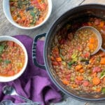 Easy vegetarian lentil soup